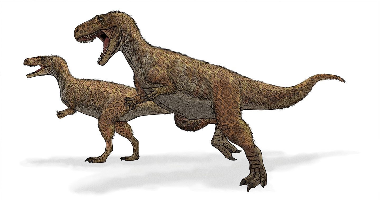 dinosaur descovery
